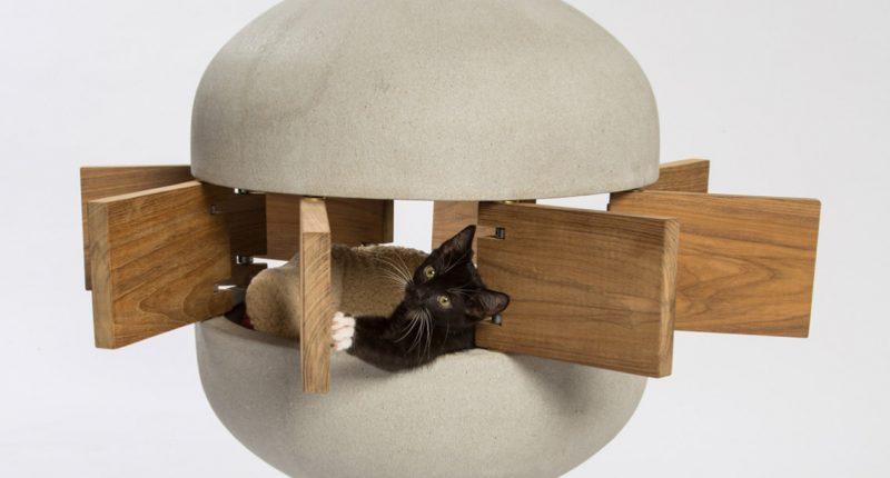 CULTURE_ART&DESIGN ดีไซเนอร์และสถาปนิกชื่อดังร่วมออกแบบบ้านน้องแมวสุดเท่_cover_