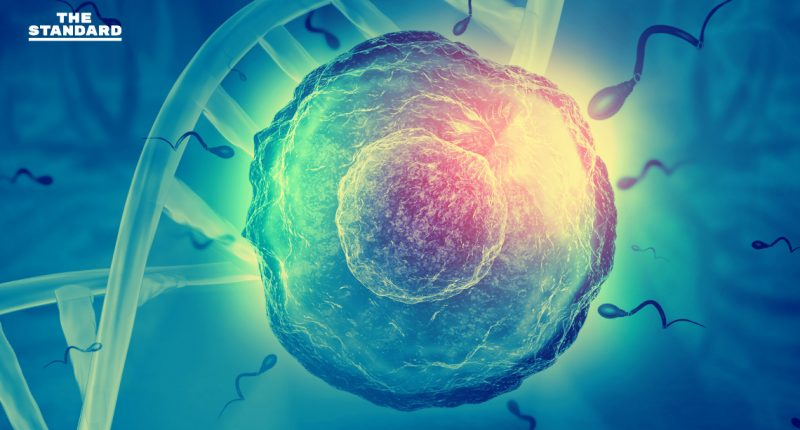 human eggs grown in lab for first time