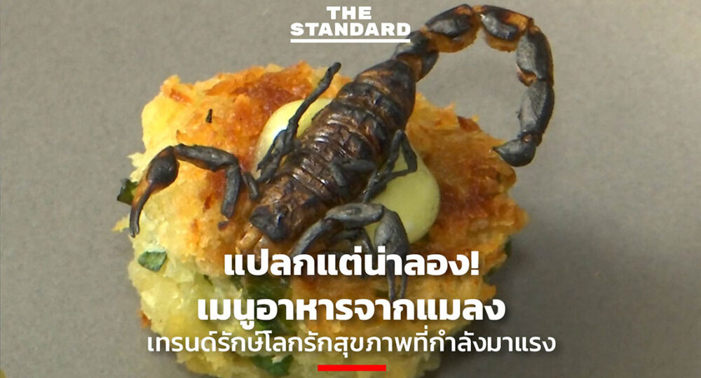 Edible Insect Nutrition
