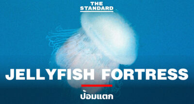 Jellyfish Fortress