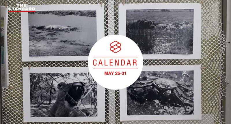 THE-STANDARD-CALENDAR_25-31-MAY_cover-web