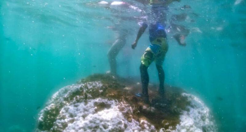 UPDATE_ดร.ธรณ์ เผยภาพนักท่องเที่ยวเหยียบปะการัง_WEB_COVER