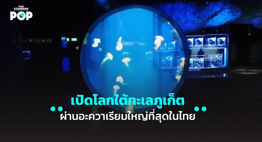 Aquarium Phuket
