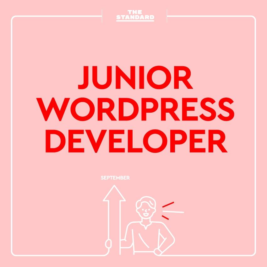 Junior Wordpress Developer