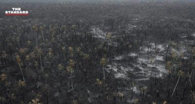 ไฟป่าในโบลิเวีย