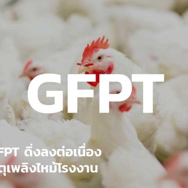 หุ้น GFPT