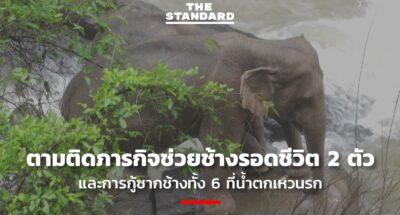 ภารกิจช่วยช้าง