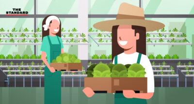 Kitchakood Organics Farm