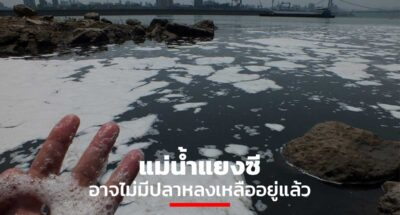 แม่น้ำแยงซี