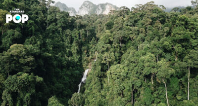 ห่มป่า ยลนก เดินสำรวจป่าต้นน้ำ ณ อุทยานแห่งชาติเขาพนมเบญจา