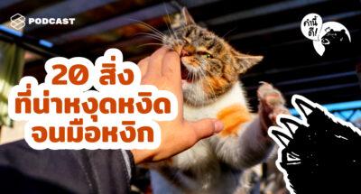 คำนี้ดี EP.520 Pet Peeve ไม่ใช่สัตว์เลี้ยง แต่มันคือความรำคาญ | What's your pet peeves