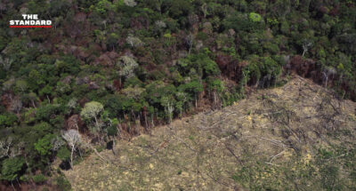ผืนป่าแอมะซอนถูกทำลายมากสุดในรอบ 12 ปี พื้นที่เสียหายเพิ่มขึ้น 9.5% จากปี 2019