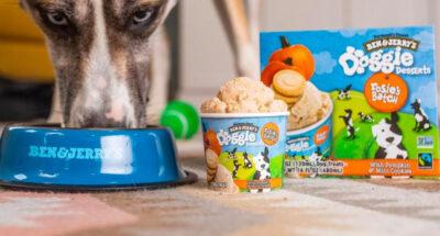 ไอศกรีมสำหรับน้องหมา