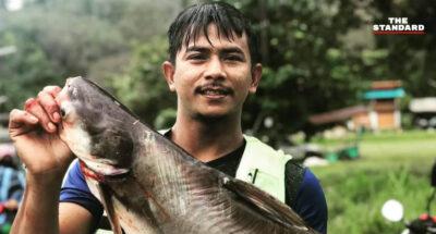 ฝนตกหนักยะลา เขื่อนบางลางวิกฤตต้องเร่งระบายน้ำ ชาวบ้านแห่จับปลาบึกขาย