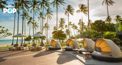 SAii Phi Phi Island Village สวรรค์แห่งการพักผ่อนริมหาดบนเกาะพีพีดอน