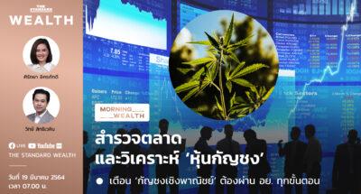 สำรวจตลาดและวิเคราะห์ 'หุ้นกัญชง' | Morning Wealth 19 มีนาคม 2564