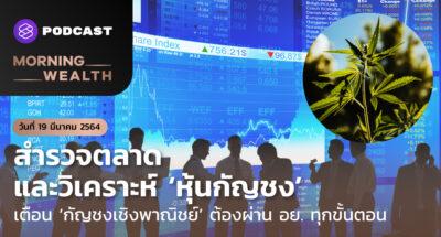 สำรวจตลาดและวิเคราะห์ 'หุ้นกัญชง'   Morning Wealth 19 มีนาคม 2564