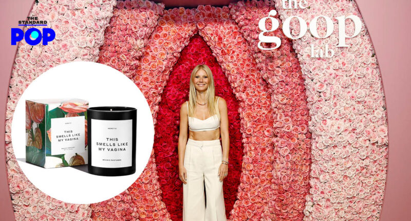 Goop THIS SMELLS LIKE MY Vagina CANDLE
