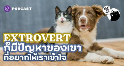 9 สิ่งที่ Extrovert อยากให้ Introvert รู้ไว้และเข้าใจเขาด้วย