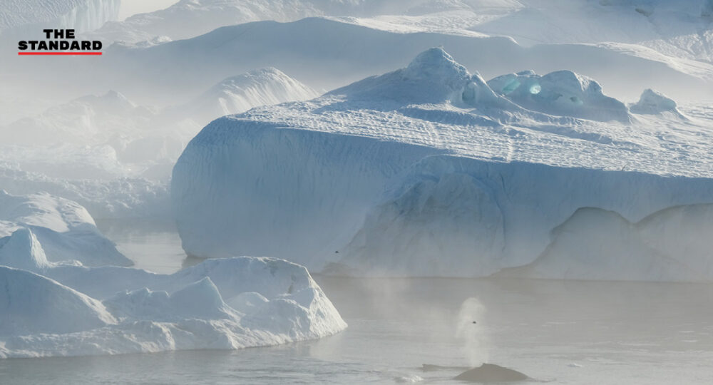 Greenland snowy mountains