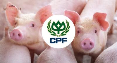 Swine Business