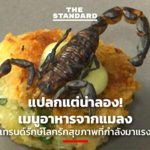 แปลกแต่น่าลอง! เมนูอาหารจากแมลง เทรนด์รักษ์โลกรักสุขภาพที่กำลังมาแรง
