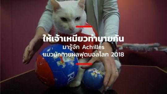 ให้เจ้าเหมียวทำนายกัน มารู้จัก Achilles แมวนักทายผลฟุตบอลโลก 2018